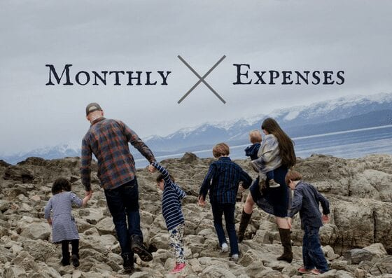 early retirement budget with big family