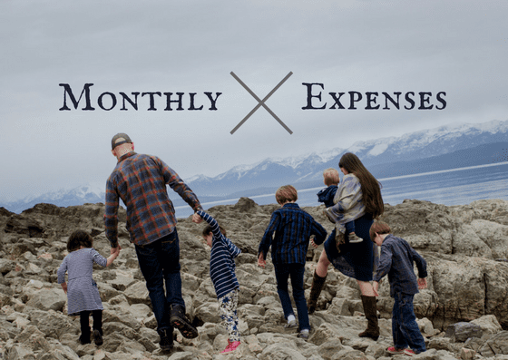 Passion plus Passive: February and March