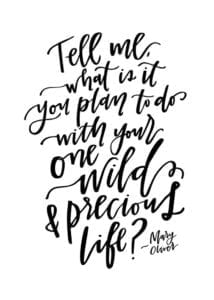 mary oliver quote, one wild and precious life