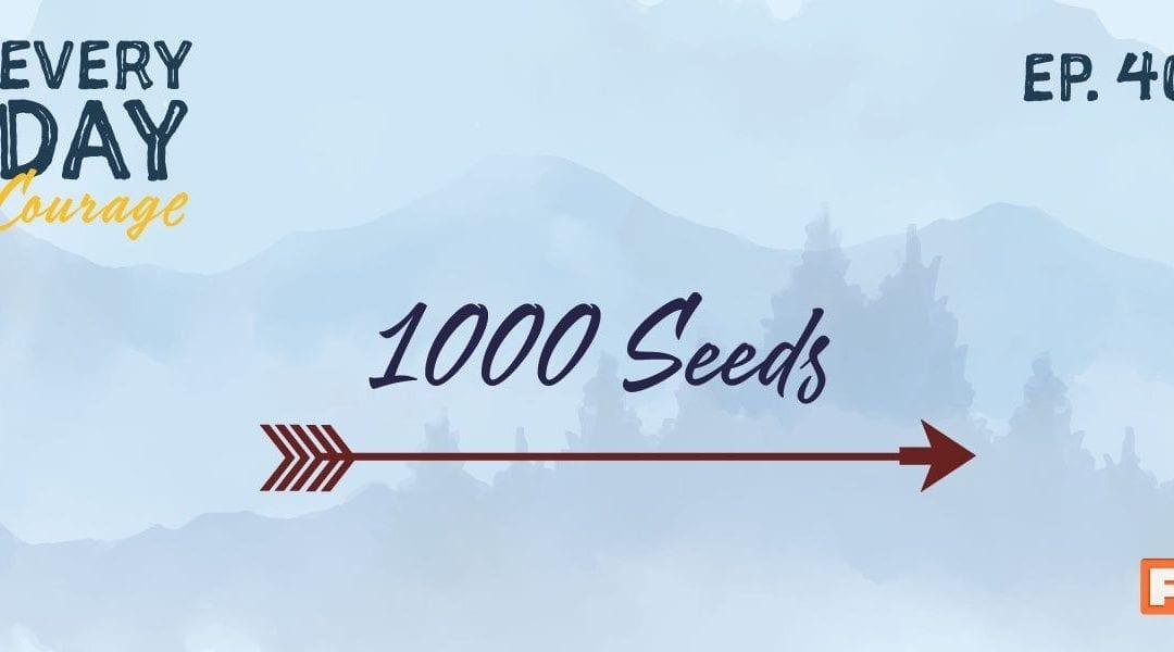 1000 Seeds